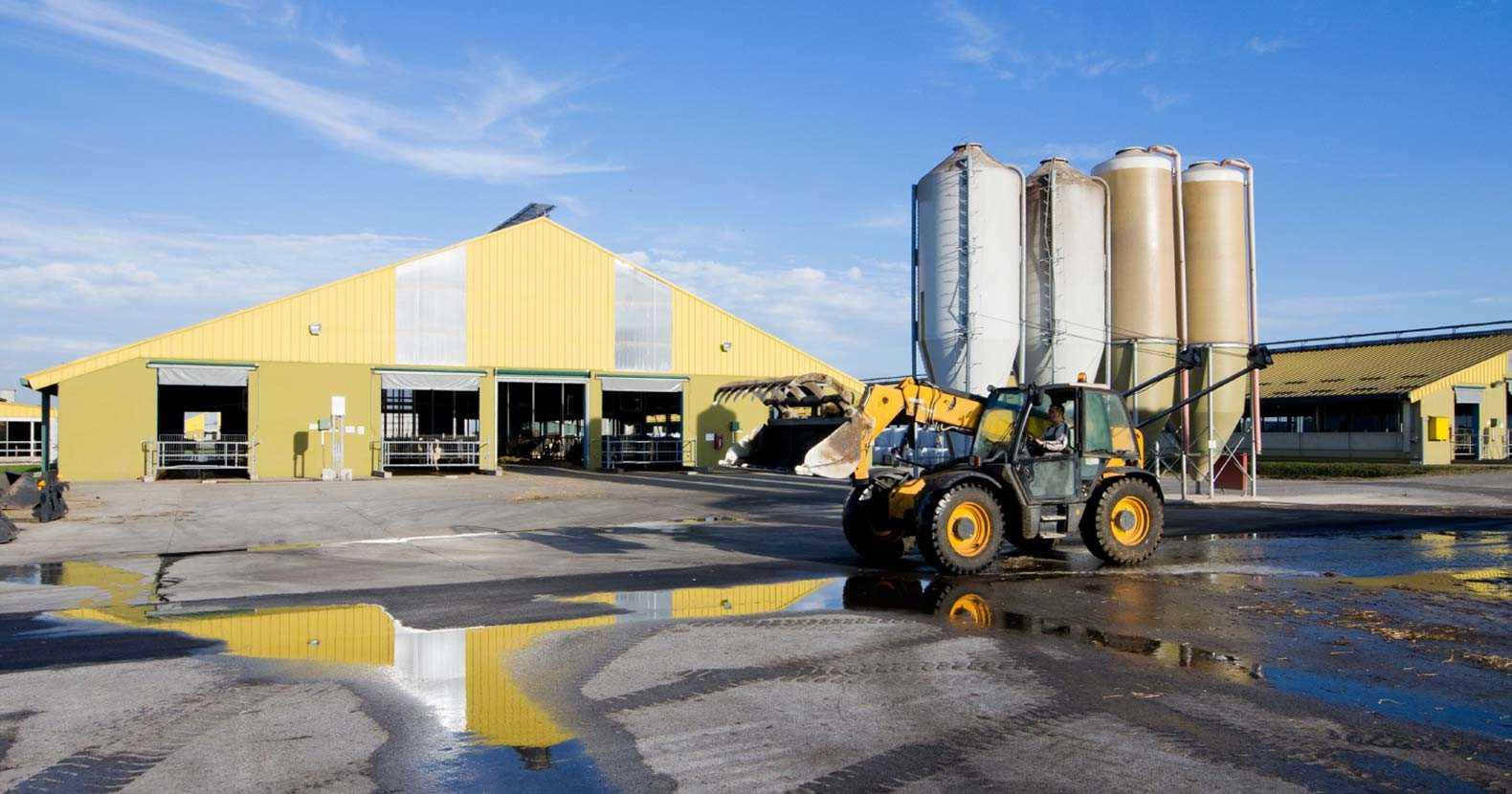 Farm Corporate